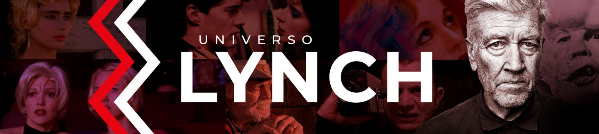 Universo Lynch (Banner Superior)